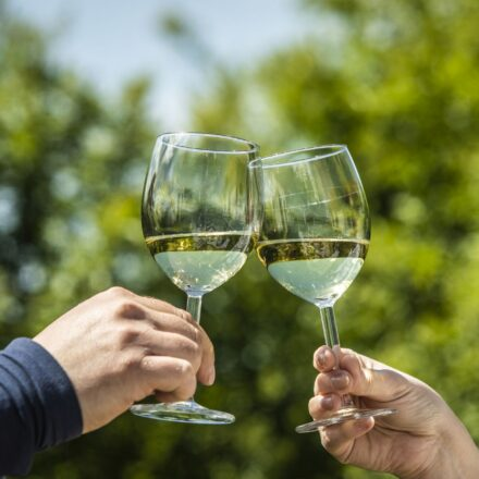 Czy polskie wino ma smak?