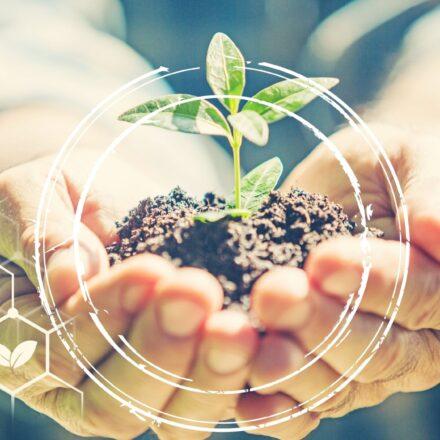 CSR. Społeczna odpowiedzialność biznesu
